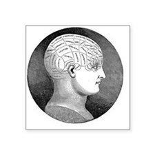 "Phrenology Square Sticker 3"" x 3"""