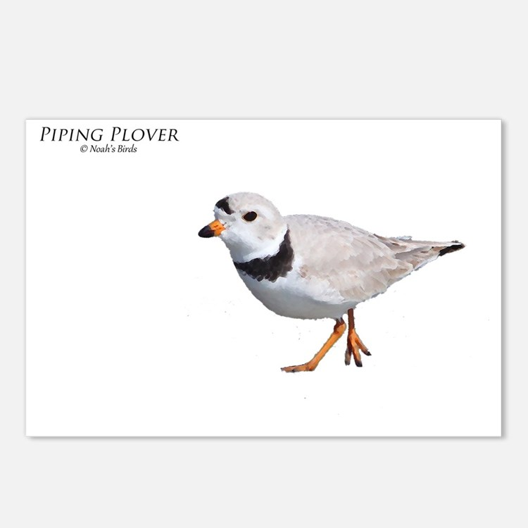 PIPING PLOVER T DESIGN Postcards (Package of 8)