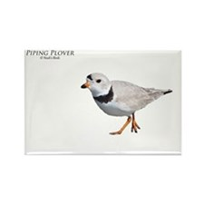 PIPING PLOVER T DESIGN Rectangle Magnet