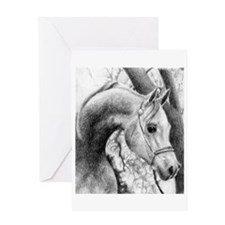 Arabian Halter Horse Greeting Cards