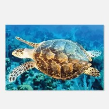 Turtle Postcards (Package of 8)