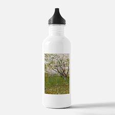 The flowering orchard - Van Gogh - c1888 Water Bot