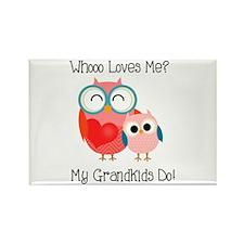 Owl Grandkids Rectangle Magnet (10 pack)