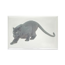 Black Panthers Rectangle Magnet