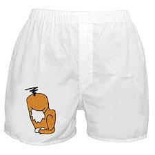 FAIL Boxer Shorts