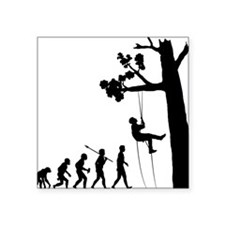 "Tree-Climbing Square Sticker 3"" x 3"""