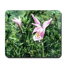 Swamp Pink Mousepad