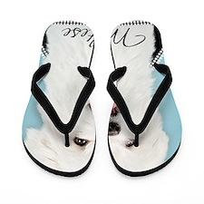 Cute Maltese Flip Flops
