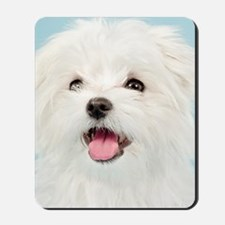 Cute Maltese Mousepad