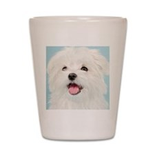 Cute Maltese Shot Glass