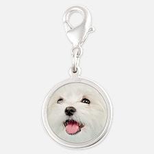 Cute Maltese Silver Round Charm