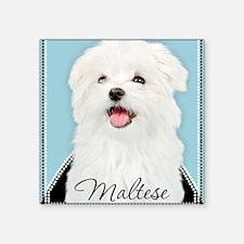 """Cute Maltese Square Sticker 3"""" x 3"""""""