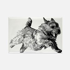 Running Norwich Terrier Male Rectangle Magnet