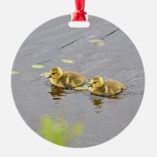 2 Goslings Ornament
