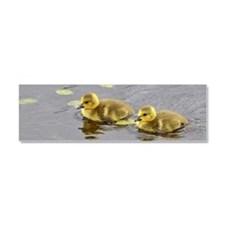 2 Goslings Car Magnet 10 X 3