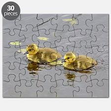 2 goslings Puzzle