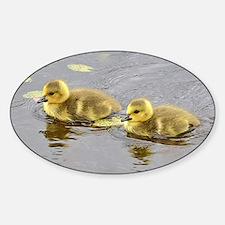 2 goslings Decal