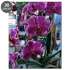 Purple Moth Orchid Puzzle