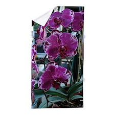Purple Moth Orchid Beach Towel