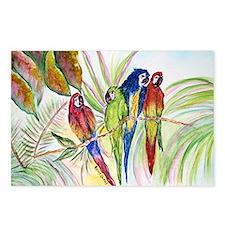 Parrots for duvet Postcards (Package of 8)