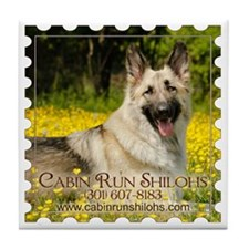 Cabin Runs Lady Tile Coaster