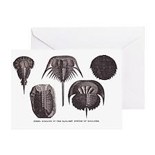 Trilobites Greeting Card