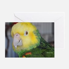 Double Yellow-Headed Amazon Greeting Card