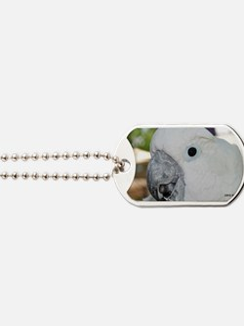 Cheeky Cockatoo Dog Tags