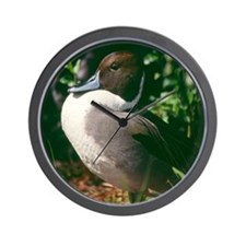 Mallard Duck Wall Clock