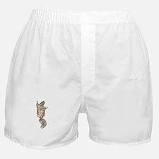 Cute Squirel Boxer Shorts