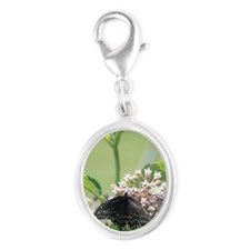 Black Swallowtail Butterfly on  Silver Oval Charm