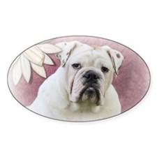 bulldog with pink background Decal