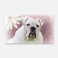 bulldog with pink background Rectangle Car Magnet