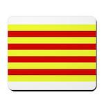 Catalunya Flag Mousepad