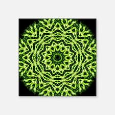 "Kiwi Kaleidoscope Square Sticker 3"" x 3"""