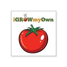 "iGrowMyOwn: Tomato Square Sticker 3"" x 3"""