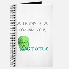 Ari Friend: Journal