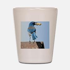 Cute Bluebird with Peanut Shot Glass
