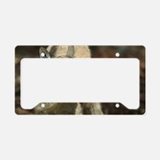 Young wild goat License Plate Holder
