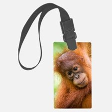 Young Sumatran orangutan Luggage Tag