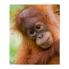 Young Sumatran orangutan Throw Blanket