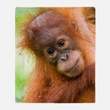 Young Sumatran orangutan Throw Blanket