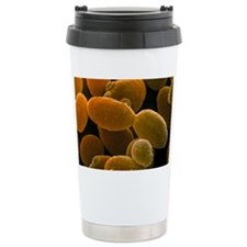 Yeast, Saccharomyces cerevisiae Travel Mug