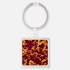 Yersinia pestis (plague) bacteria Square Keychain