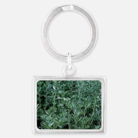 Wormwood (Artemisia absinthium) Landscape Keychain