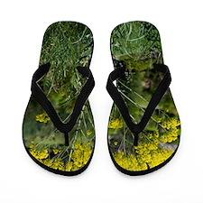Woad (Isatis tinctoria) Flip Flops