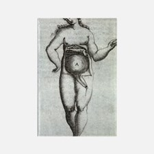 Woman's uterus, 17th century artw Rectangle Magnet