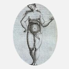 Woman's uterus, 17th century artwork Oval Ornament