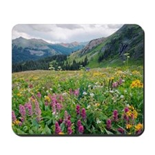 Wildflower meadow Mousepad