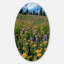 Wildflower meadow Decal